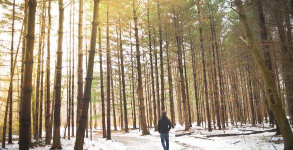 Pourquoi Dieu est-il parfois silencieux dans nos vies ?