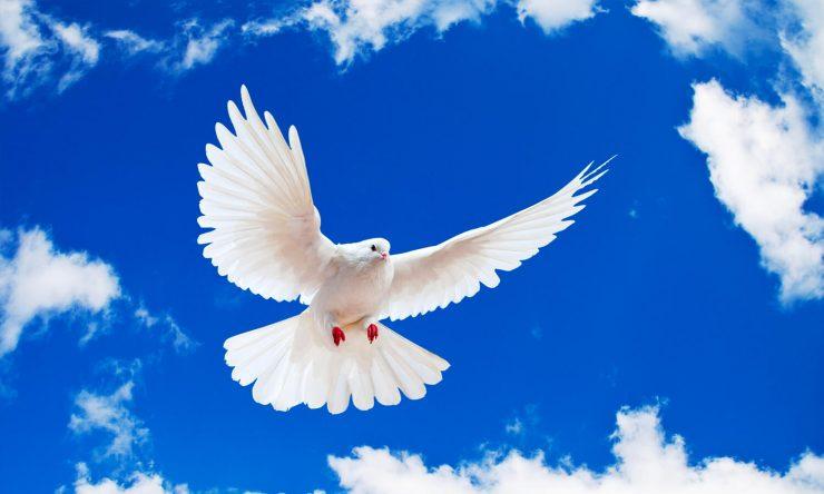 Comment puis-je expérimenter la plénitude du Saint-Esprit ?