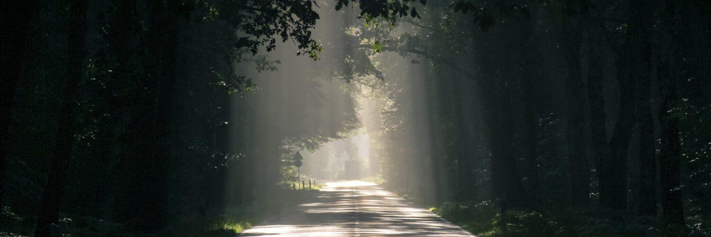 Qu'est-ce que la vie éternelle? Qu'est-ce que la vie après la mort?